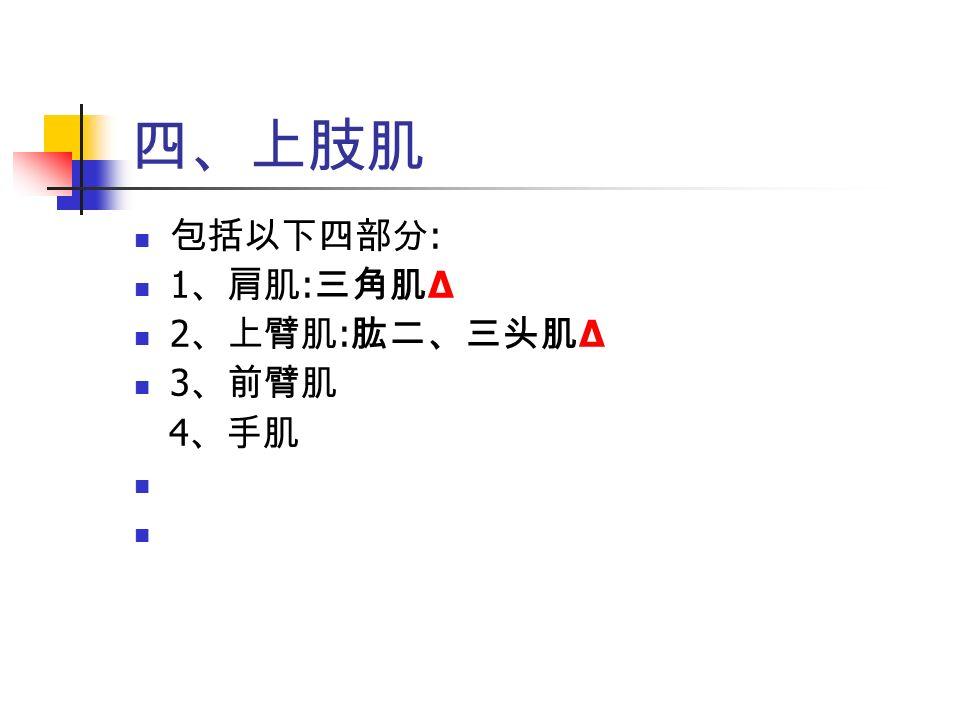 四、上肢肌 包括以下四部分 : 1 、肩肌 : 三角肌 Δ 2 、上臂肌 : 肱二、三头肌 Δ 3 、前臂肌 4 、手肌