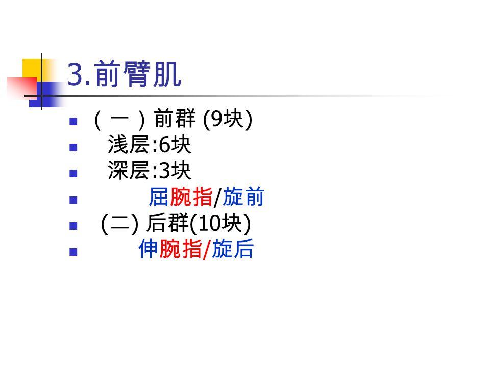 3. 前臂肌 (一)前群 (9 块 ) 浅层 :6 块 深层 :3 块 屈腕指 / 旋前 ( 二 ) 后群 (10 块 ) 伸腕指 / 旋后