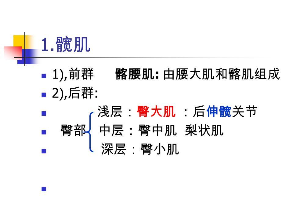 1. 髋肌 1), 前群 髂腰肌 : 由腰大肌和髂肌组成 2), 后群 : 浅层:臀大肌 :后伸髋关节 臀部 中层:臀中肌 梨状肌 深层:臀小肌