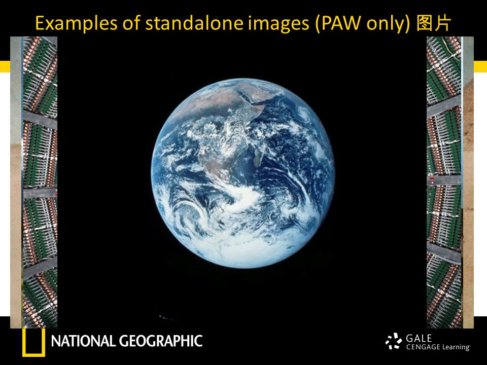 Examples of standalone images (PAW only) 图片