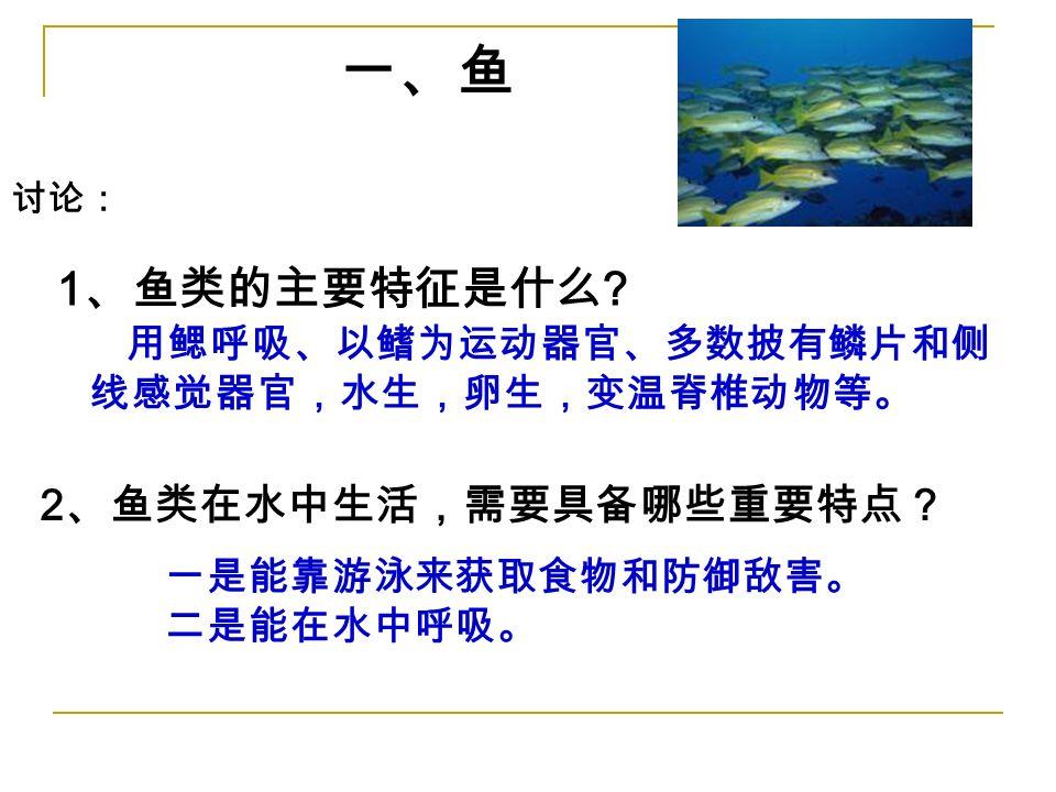 讨论: 2 、鱼类在水中生活,需要具备哪些重要特点? 一、鱼 一是能靠游泳来获取食物和防御敌害。 二是能在水中呼吸。 1 、鱼类的主要特征是什么 .