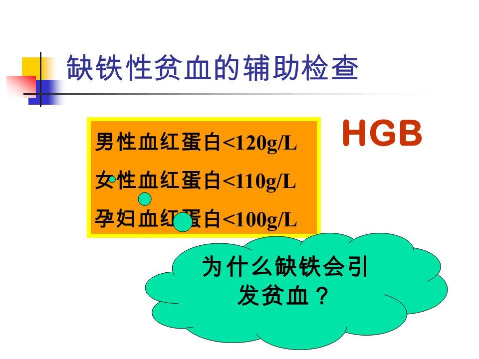 缺铁性贫血的辅助检查 男性血红蛋白 <120g/L 女性血红蛋白 <110g/L 孕妇血红蛋白 <100g/L HGB 为什么缺铁会引 发贫血?