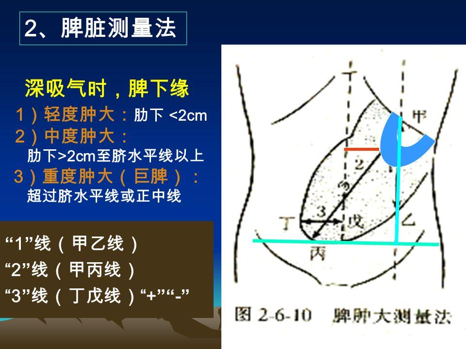 (七)脾脏触诊 仰卧位右侧卧位 1 、触诊方法