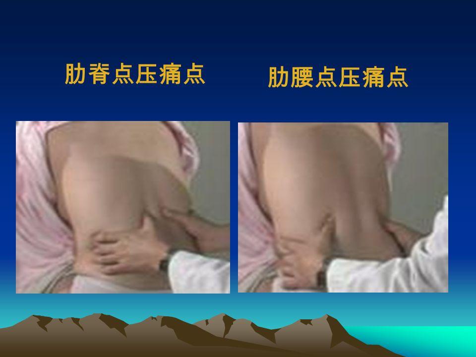 (八)肾脏触诊