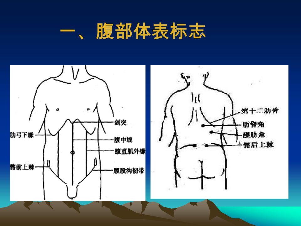 第一节 腹部的体表标志及分区 第二节 腹部视诊 第三节 腹部触诊 第四节 腹部叩诊 第五节 腹部听诊