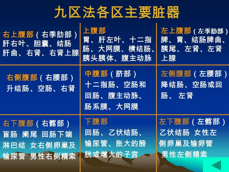 左上腹 (left upper quadrant) 肝左叶、脾、胃、小肠、胰体、 胰尾、左肾上腺、左肾、结肠 脾曲、部分横结肠、腹主动脉 右下腹 (right lower quadrant) 盲肠、阑尾、部分升结肠、小肠、 右输尿管、膨胀的膀胱、增大的 子宫、女性右侧输卵管、男性右 侧精索、 左下腹 (1eft lower quadrant) 乙状结肠、部分降结肠、小肠、 膨胀的膀胱、增大的子宫、女性 左侧卵巢和输卵管、男性左侧精 索、左输尿管 右上腹 (right upper quadrant) 肝、胆囊、幽门、十二指肠、 小肠、胰头、右肾上腺、右肾、 结肠肝曲、部分横结肠、下腔 V 四区法各区主要脏器
