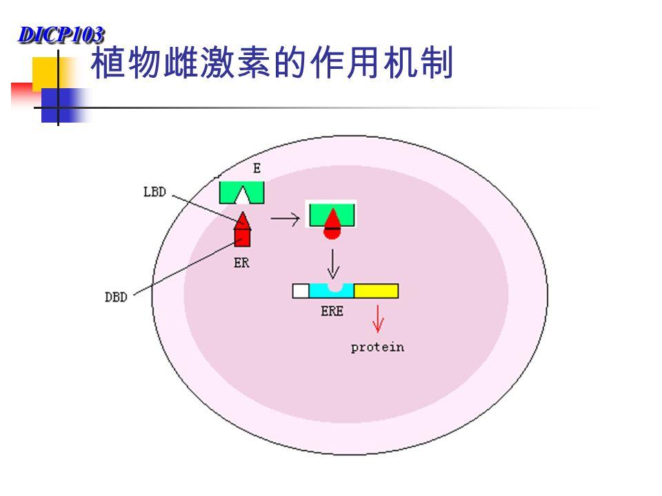 DICP103DICP103 植物雌激素的作用机制