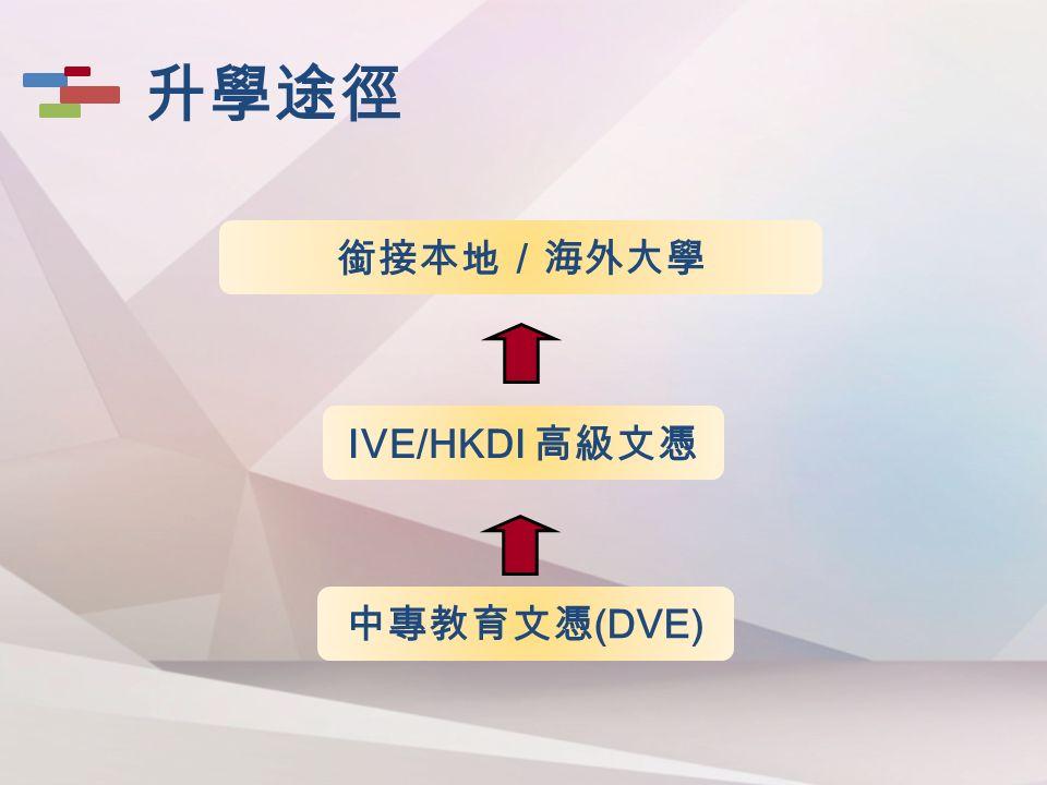 銜接本地/海外大學 IVE/HKDI 高級文憑 中專教育文憑 (DVE) 升學途徑