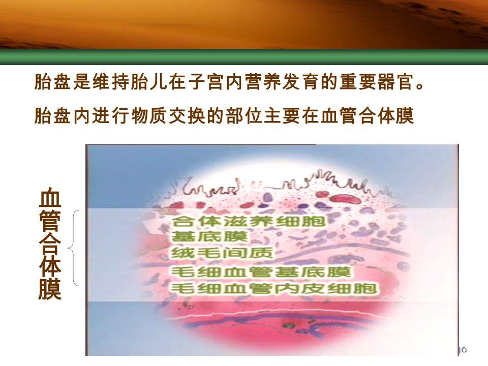Company Logo 胎盘是维持胎儿在子宫内营养发育的重要器官。 胎盘内进行物质交换的部位主要在血管合体膜