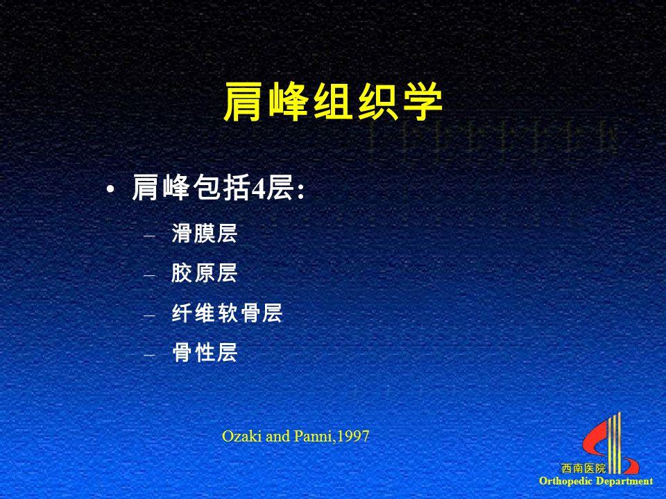 Orthopedic Department 肩峰组织学 肩峰包括 4 层 : – 滑膜层 – 胶原层 – 纤维软骨层 – 骨性层 Ozaki and Panni,1997