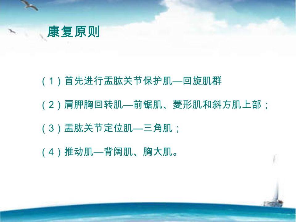 康复原则 ( 1 )首先进行盂肱关节保护肌 — 回旋肌群 ( 2 )肩胛胸回转肌 — 前锯肌、菱形肌和斜方肌上部; ( 3 )盂肱关节定位肌 — 三角肌; ( 4 )推动肌 — 背阔肌、胸大肌。