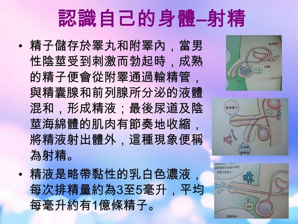精子儲存於睪丸和附睪內,當男 性陰莖受到刺激而勃起時,成熟 的精子便會從附睪通過輸精管, 與精囊腺和前列腺所分泌的液體 混和,形成精液;最後尿道及陰 莖海綿體的肌肉有節奏地收縮, 將精液射出體外,這種現象便稱 為射精。 精液是略帶黏性的乳白色濃液, 每次排精量約為 3 至 5 毫升,平均 每毫升約有 1 億條精子。 認識自己的身體 – 射精