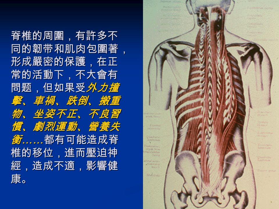 為何脊椎會出問题