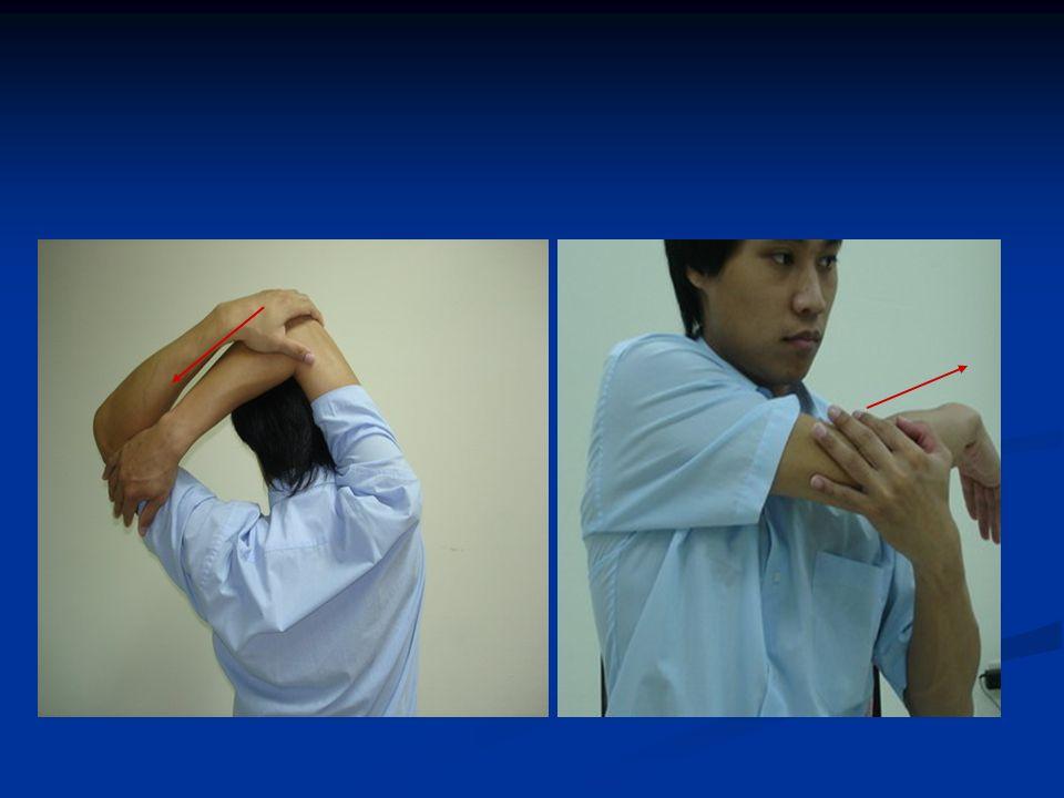 頸部伸展牽拉運動 2 滚肩