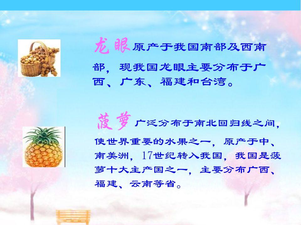 龙眼 原产于我国南部及西南 部,现我国龙眼主要分布于广 西、广东、福建和台湾 。 菠萝 广泛分布于南北回归线之间, 使世界重要的水果之一,原产于中、 南美洲,17世纪转入我国,我国是菠 萝十大主产国之一,主要分布广西、 福建、云南等省。