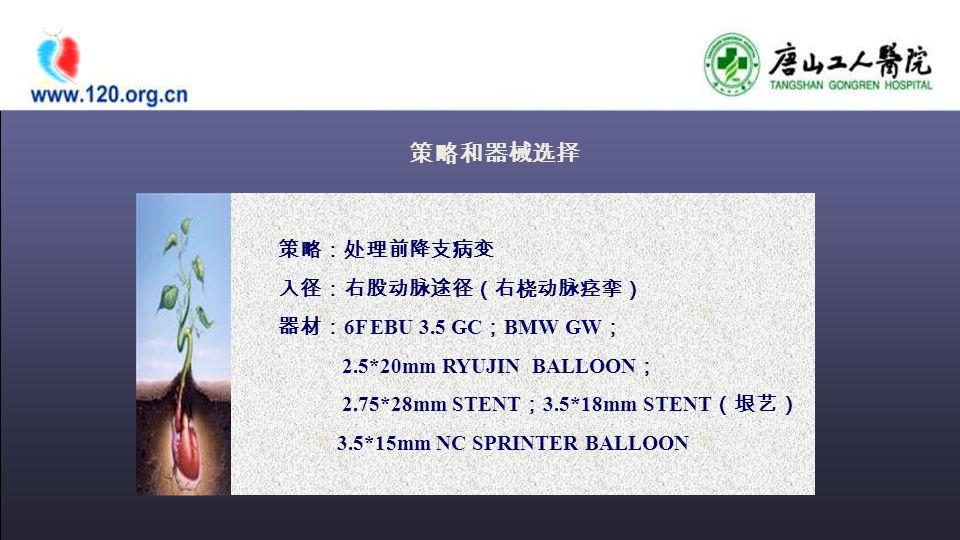 策略和器械选择 策略:处理前降支病变 入径:右股动脉途径(右桡动脉痉挛) 器材: 6F EBU 3.5 GC ; BMW GW ; 2.5*20mm RYUJIN BALLOON ; 2.75*28mm STENT ; 3.5*18mm STENT (垠艺) 3.5*15mm NC SPRINTER BALLOON