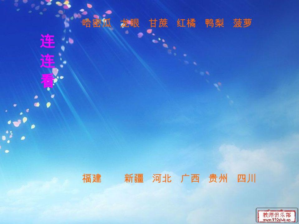 连连看连连看 哈密瓜 龙眼 甘蔗 红橘 鸭梨 菠萝 福建 新疆 河北 广西 贵州 四川