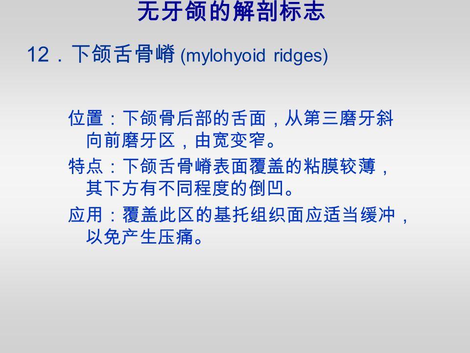 12 .下颌舌骨嵴 (mylohyoid ridges) 位置:下颌骨后部的舌面,从第三磨牙斜 向前磨牙区,由宽变窄。 特点:下颌舌骨嵴表面覆盖的粘膜较薄, 其下方有不同程度的倒凹。 应用:覆盖此区的基托组织面应适当缓冲, 以免产生压痛。 无牙颌的解剖标志