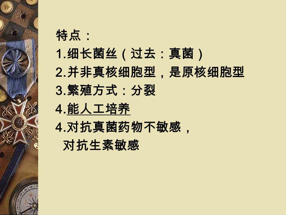 放线菌目( Actinomycetales ) 放线菌属( Actinomyces ) 诺卡菌属( Nocardia ) 分枝杆菌属 部分可致病: 放线菌病( actinomycosis ) 诺卡菌病( nocardiosis ) 足菌肿( actinomycetoma ) 分类( 1 )含分枝菌酸 诺卡菌属 分枝杆菌属 棒状杆菌属 ( 2 )不含分枝菌酸 放线菌属