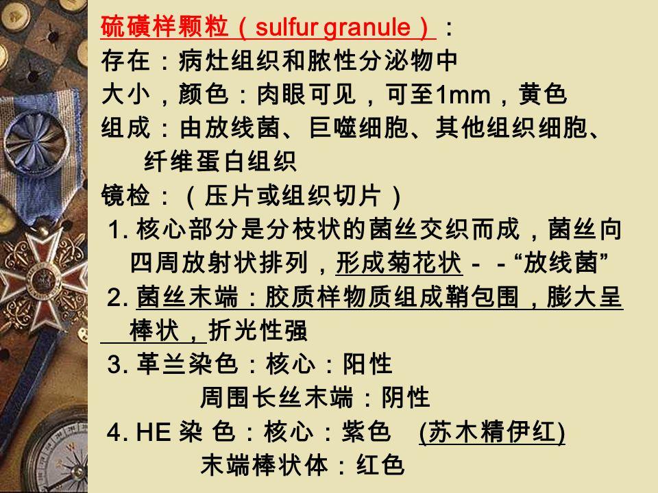生物学性状 形态:丝状杆菌 菌丝 1. 细长,无隔,有分枝 2. 在 24h 断裂成链球状或链杆状 3. 不形成气生菌丝 孢子 染色性:革兰染色阳性,非抗酸性