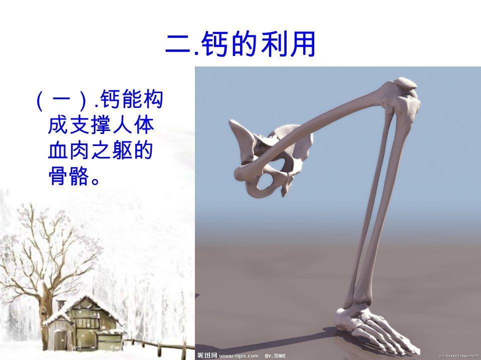 二. 钙的利用 (一). 钙能构 成支撑人体 血肉之躯的 骨骼。