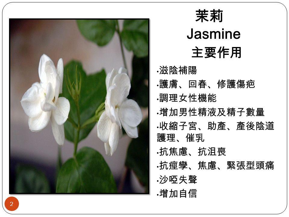茉莉 Jasmine 滋陰補陽 護膚、回春、修護傷疤 調理女性機能 增加男性精液及精子數量 收縮子宮、助產、產後陰道 護理、催乳 抗焦慮、抗沮喪 抗痙孿、焦慮、緊張型頭痛 沙啞失聲 增加自信 主要作用 2