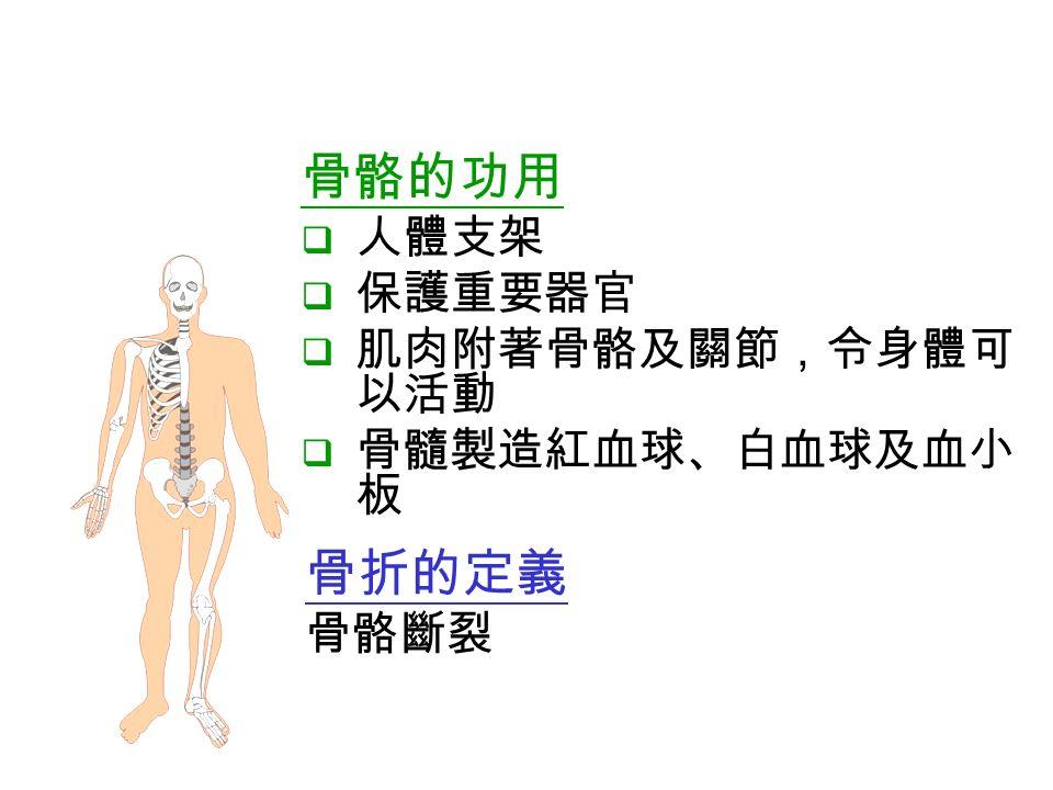 骨折的定義 骨骼斷裂 骨骼的功用  人體支架  保護重要器官  肌肉附著骨骼及關節,令身體可 以活動  骨髓製造紅血球、白血球及血小 板