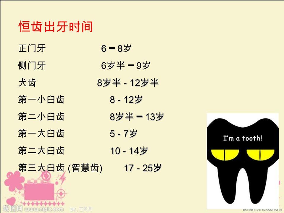 恒齿出牙时间 6 ━ 8 正门牙 6 ━ 8 岁 侧门牙 6 岁半 ━ 9 岁 8 岁半 - 12 岁半 犬齿 8 岁半 - 12 岁半 8 - 12 岁 第一小臼齿 8 - 12 岁 8 岁半 ━ 13 岁 第二小臼齿 8 岁半 ━ 13 岁 5 - 7 岁 第一大臼齿 5 - 7 岁 10 - 14 岁 第二大臼齿 10 - 14 岁 17 - 25 岁 第三大臼齿 ( 智慧齿 ) 17 - 25 岁