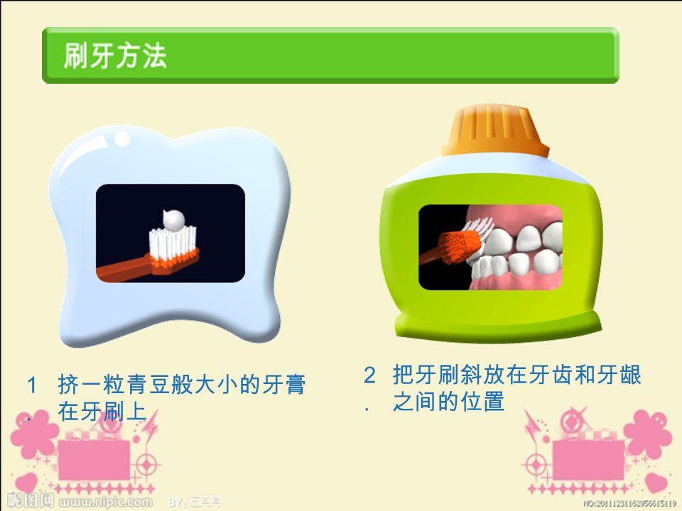 1.1. 挤一粒青豆般大小的牙膏 在牙刷上 2.2. 把牙刷斜放在牙齿和牙龈 之间的位置