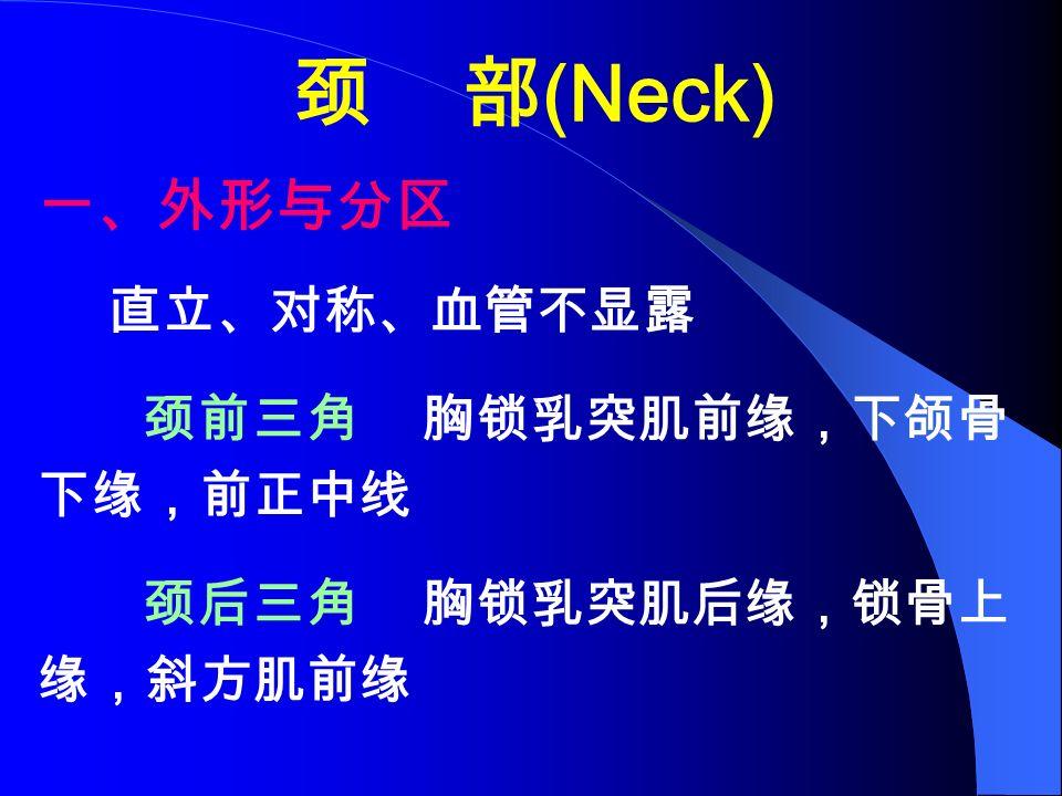 颈 部 (Neck) 一、外形与分区 直立、对称、血管不显露 颈前三角 胸锁乳突肌前缘,下颌骨 下缘,前正中线 颈后三角 胸锁乳突肌后缘,锁骨上 缘,斜方肌前缘