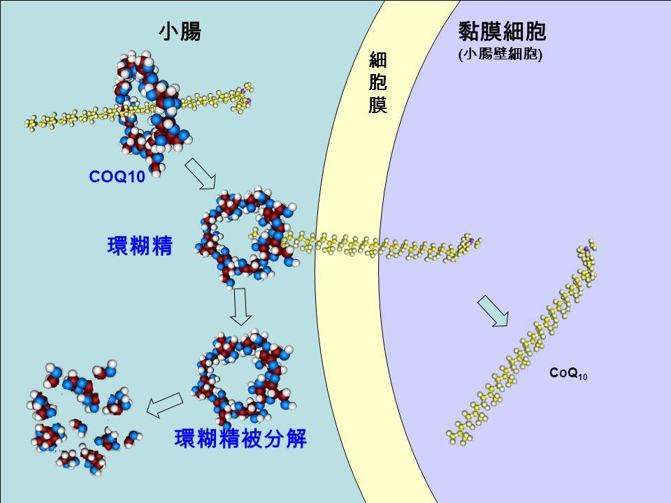 小腸黏膜細胞 ( 小腸壁細胞 ) COQ10 環糊精被分解 CoQ 10 細胞膜細胞膜 環糊精
