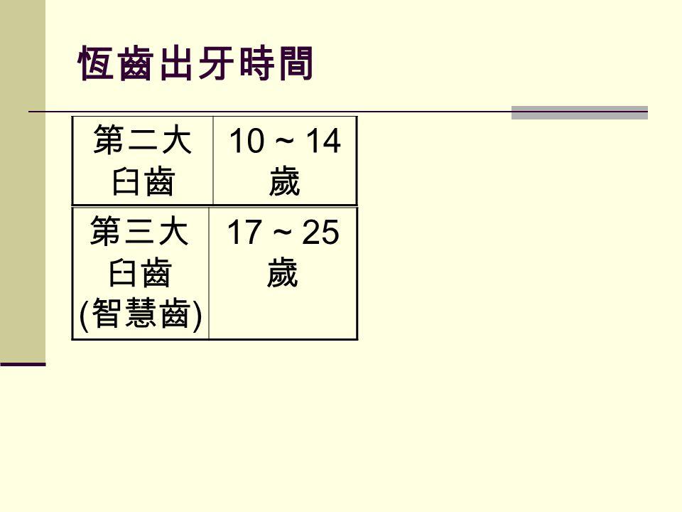 恆齒出牙時間 第三大 臼齒 ( 智慧齒 ) 17 ~ 25 歲 第二大 臼齒 10 ~ 14 歲