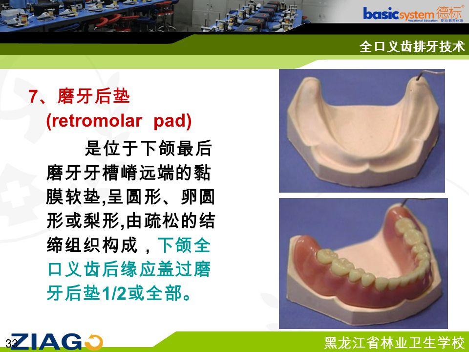 黑龙江省林业卫生学校 33 全口义齿排牙技术 7 、磨牙后垫 (retromolar pad) 是位于下颌最后 磨牙牙槽嵴远端的黏 膜软垫, 呈圆形、卵圆 形或梨形, 由疏松的结 缔组织构成,下颌全 口义齿后缘应盖过磨 牙后垫 1/2 或全部。