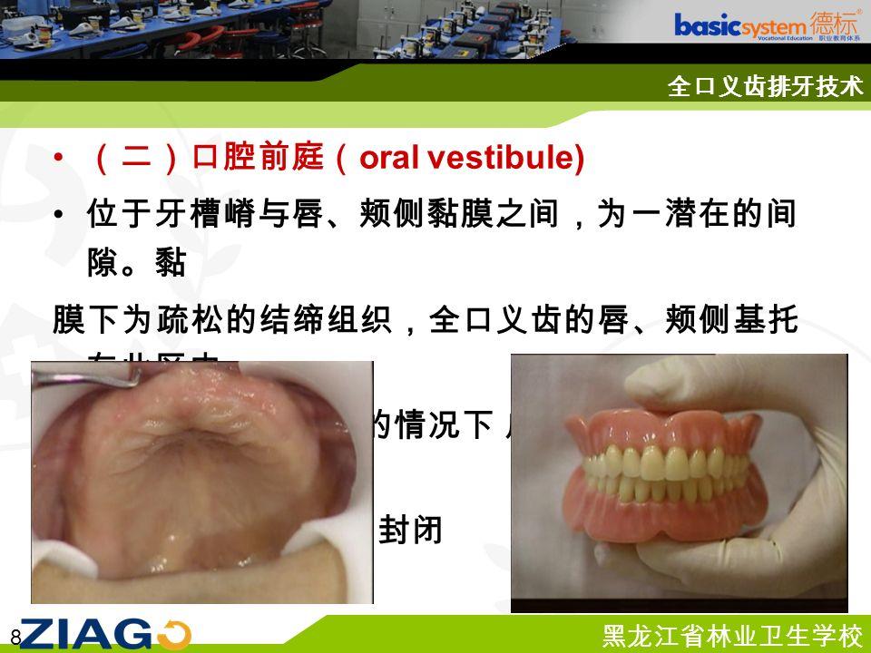 黑龙江省林业卫生学校 8 全口义齿排牙技术 (二)口腔前庭( oral vestibule) 位于牙槽嵴与唇、颊侧黏膜之间,为一潜在的间 隙。黏 膜下为疏松的结缔组织,全口义齿的唇、颊侧基托 在此区内, 在不妨碍唇、颊活动的情况下 应尽量伸展到黏膜反 折襞, 以保证基托边缘的封闭