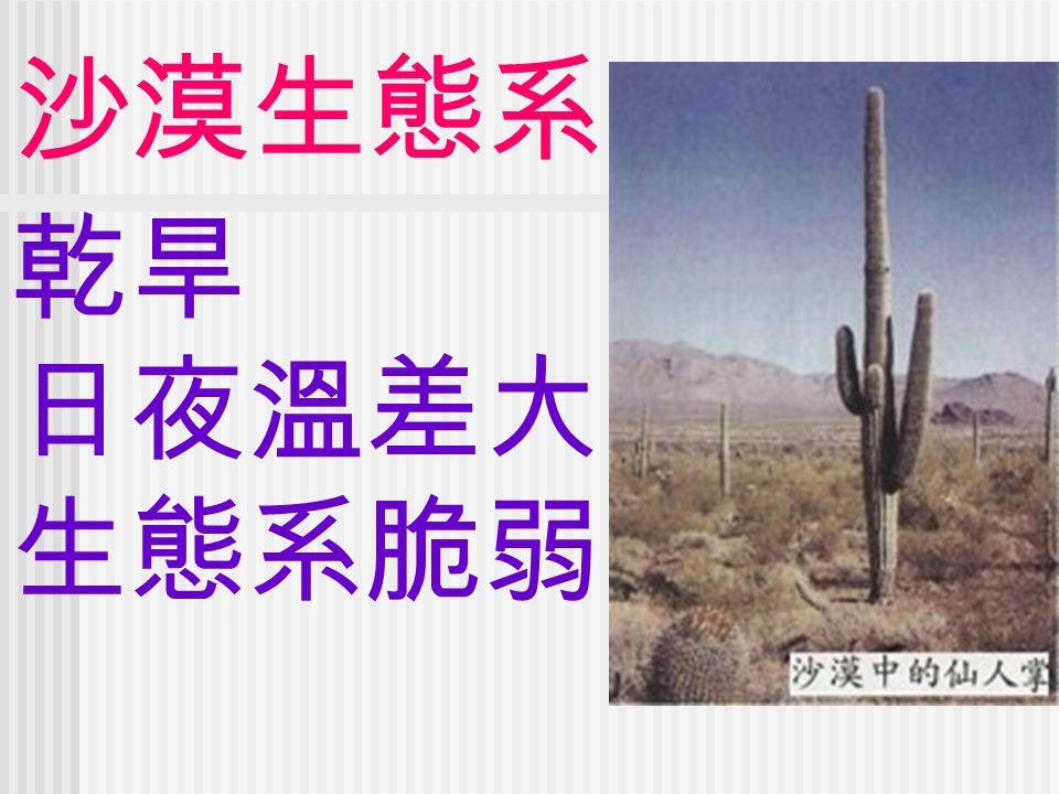 沙漠生態系 乾旱 日夜溫差大 生態系脆弱