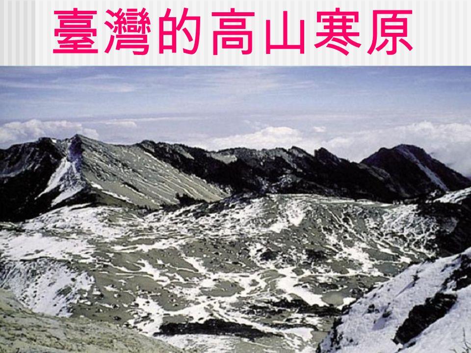 臺灣的高山寒原