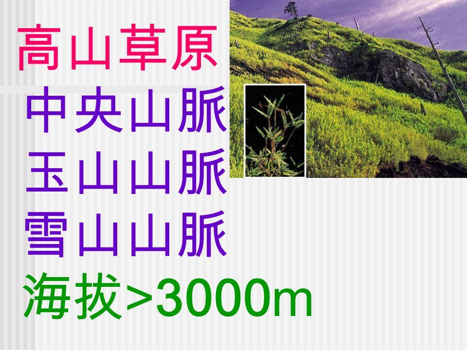 高山草原 中央山脈 玉山山脈 雪山山脈 海拔 >3000m
