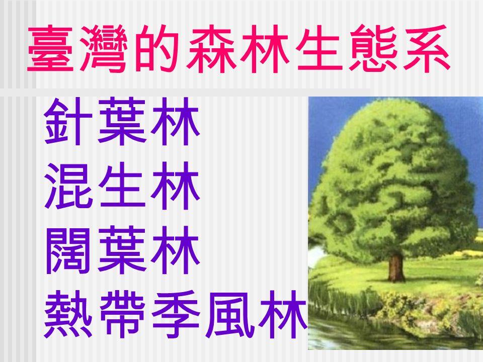 臺灣的森林生態系 針葉林 混生林 闊葉林 熱帶季風林