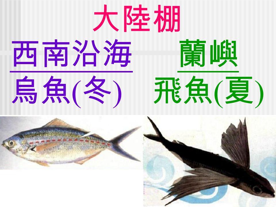 西南沿海 烏魚 ( 冬 ) 蘭嶼 飛魚 ( 夏 )