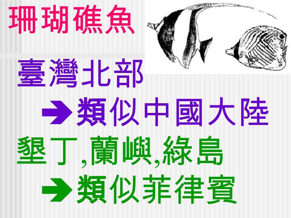 臺灣北部  類似中國大陸 墾丁, 蘭嶼, 綠島  類似菲律賓 珊瑚礁魚