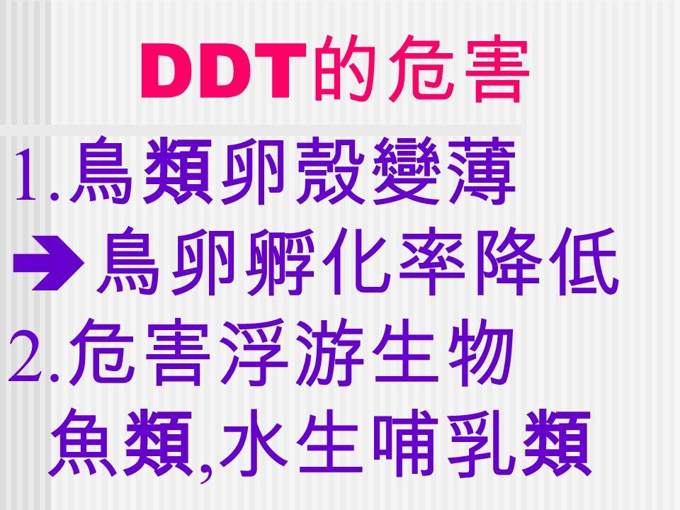 DDT 的危害 1. 鳥類卵殼變薄  鳥卵孵化率降低 2. 危害浮游生物 魚類, 水生哺乳類