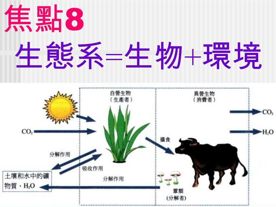 焦點 8 生態系 = 生物 + 環境