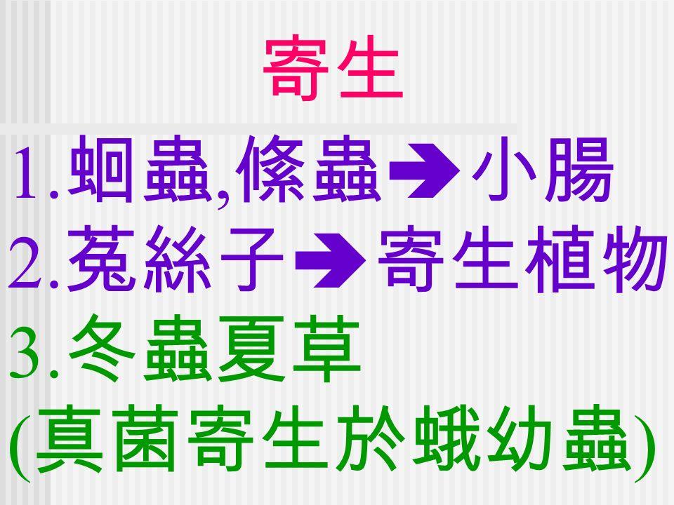 寄生 1. 蛔蟲, 絛蟲  小腸 2. 菟絲子  寄生植物 3. 冬蟲夏草 ( 真菌寄生於蛾幼蟲 )