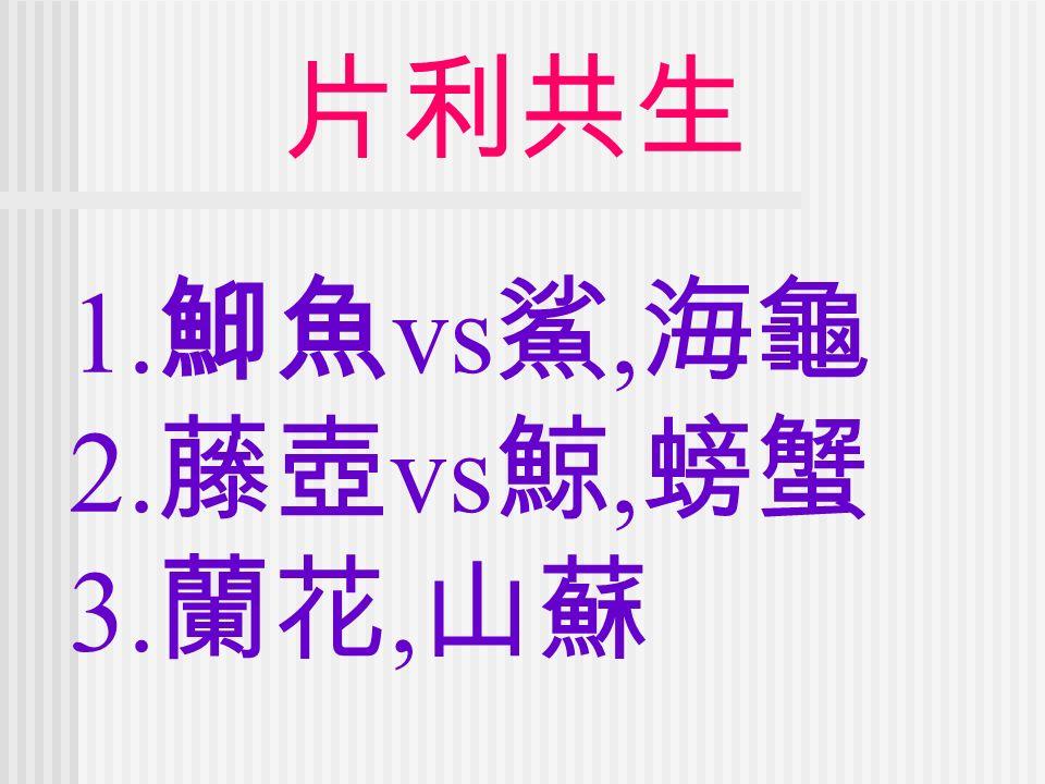 片利共生 1. 鮣魚 vs 鯊, 海龜 2. 藤壺 vs 鯨, 螃蟹 3. 蘭花, 山蘇