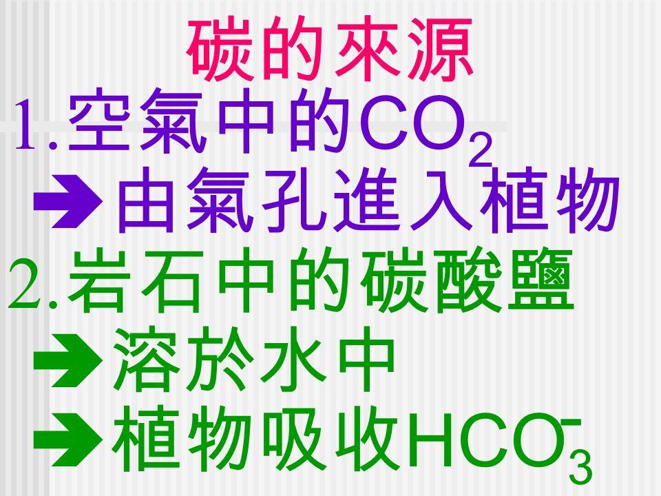 碳的來源 1. 空氣中的 CO 2  由氣孔進入植物 2. 岩石中的碳酸鹽  溶於水中  植物吸收 HCO 3 -