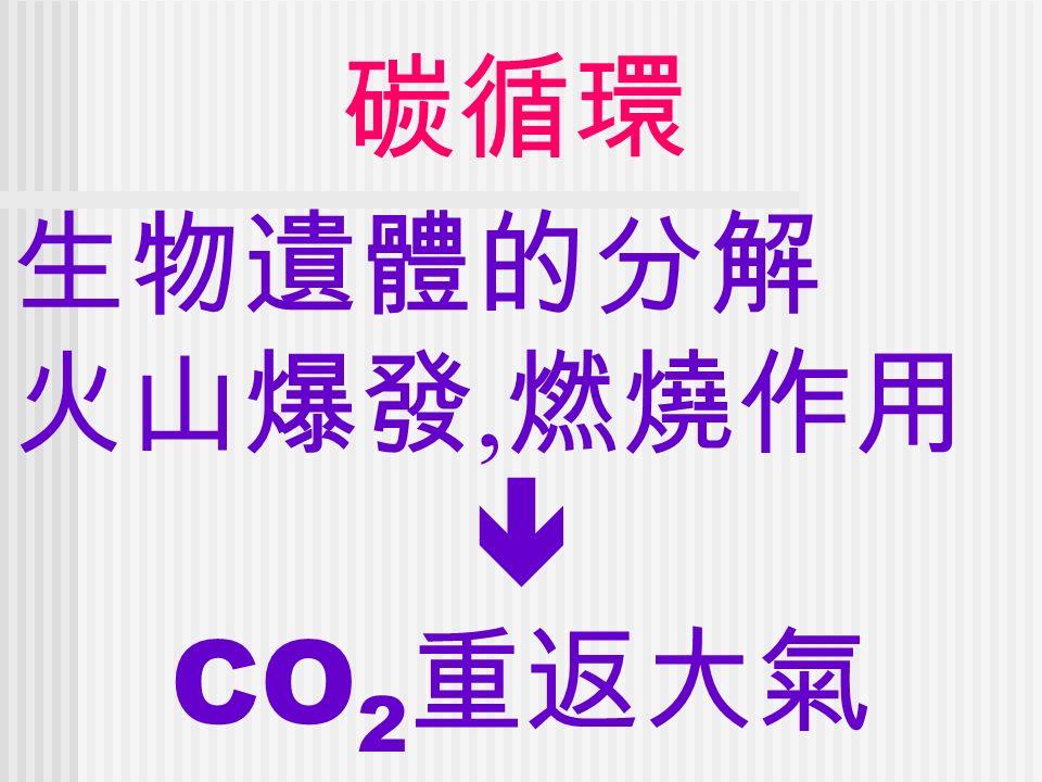 碳循環 生物遺體的分解 火山爆發, 燃燒作用  CO 2 重返大氣