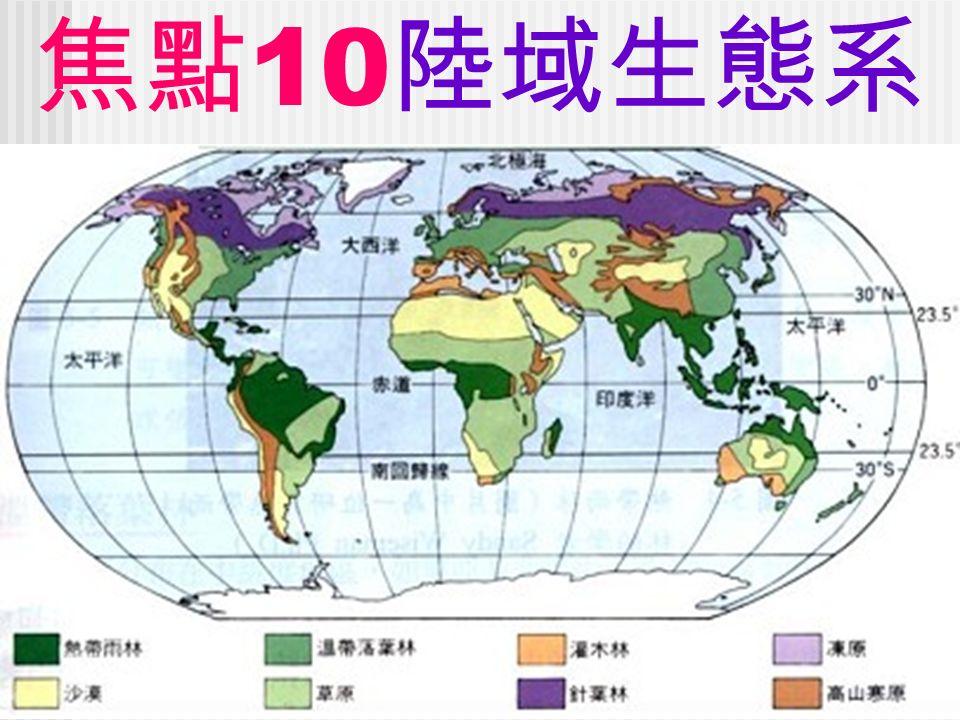 焦點 10 陸域生態系