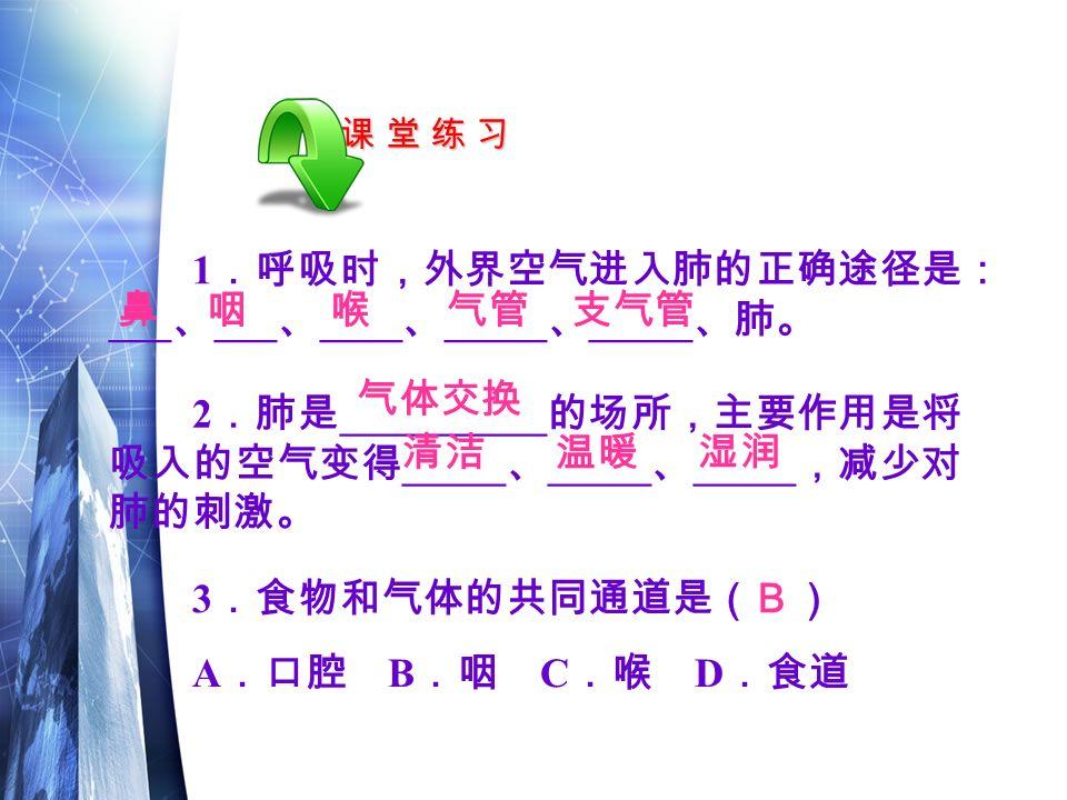 课 堂 练 习课 堂 练 习课 堂 练 习课 堂 练 习 3 .食物和气体的共同通道是( ) A .口腔 B .咽 C .喉 D .食道 B 1 .呼吸时,外界空气进入肺的正确途径是: ___ 、 ___ 、 ____ 、 _____ 、 _____ 、肺。 鼻咽喉气管支气管 2 .肺是 __________ 的场所,主要作用是将 吸入的空气变得 _____ 、 _____ 、 _____ ,减少对 肺的刺激。 气体交换 清洁温暖湿润