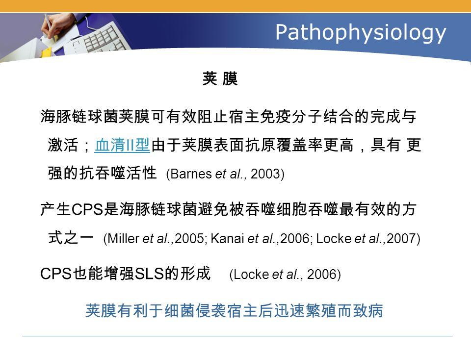 Pathophysiology 荚 膜荚 膜 海豚链球菌荚膜可有效阻止宿主免疫分子结合的完成与 激活;血清Ⅱ型由于荚膜表面抗原覆盖率更高,具有 更 强的抗吞噬活性 (Barnes et al., 2003)血清Ⅱ型 产生 CPS 是海豚链球菌避免被吞噬细胞吞噬最有效的方 式之一 (Miller et al.,2005; Kanai et al.,2006; Locke et al.,2007) CPS 也能增强 SLS 的形成 (Locke et al., 2006) 荚膜有利于细菌侵袭宿主后迅速繁殖而致病