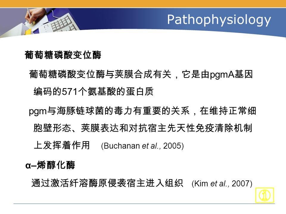 Pathophysiology 葡萄糖磷酸变位酶 葡萄糖磷酸变位酶与荚膜合成有关,它是由 pgmA 基因 编码的 571 个氨基酸的蛋白质 pgm 与海豚链球菌的毒力有重要的关系,在维持正常细 胞壁形态、荚膜表达和对抗宿主先天性免疫清除机制 上发挥着作用 (Buchanan et al., 2005) α– 烯醇化酶 通过激活纤溶酶原侵袭宿主进入组织 (Kim et al., 2007)